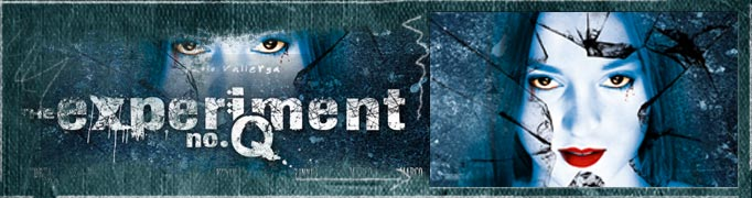 The Experiment No.Q Banner